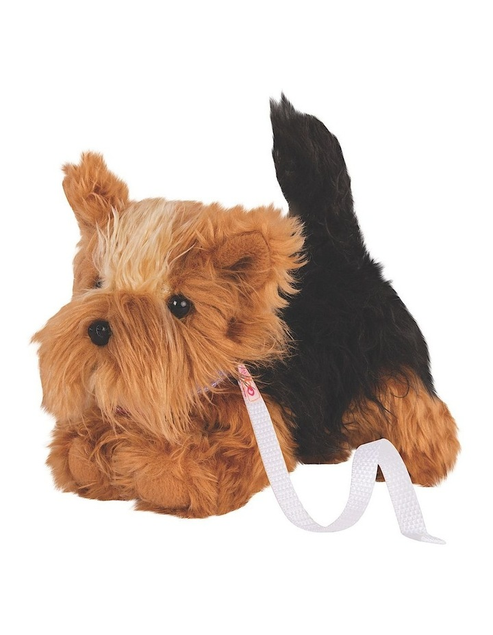 Yorkshire Terrier Pup image 2