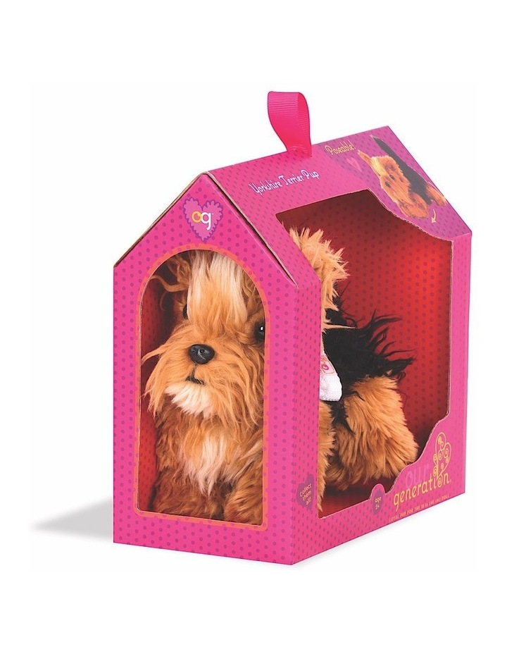 Yorkshire Terrier Pup image 3