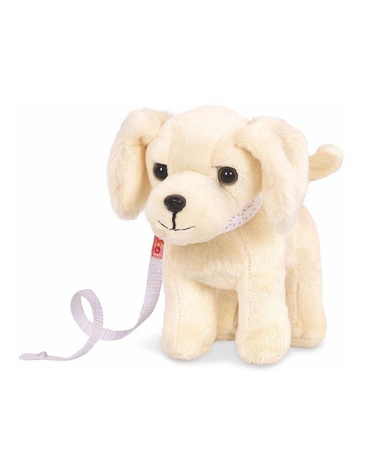 Golden Retriever Pup image 5