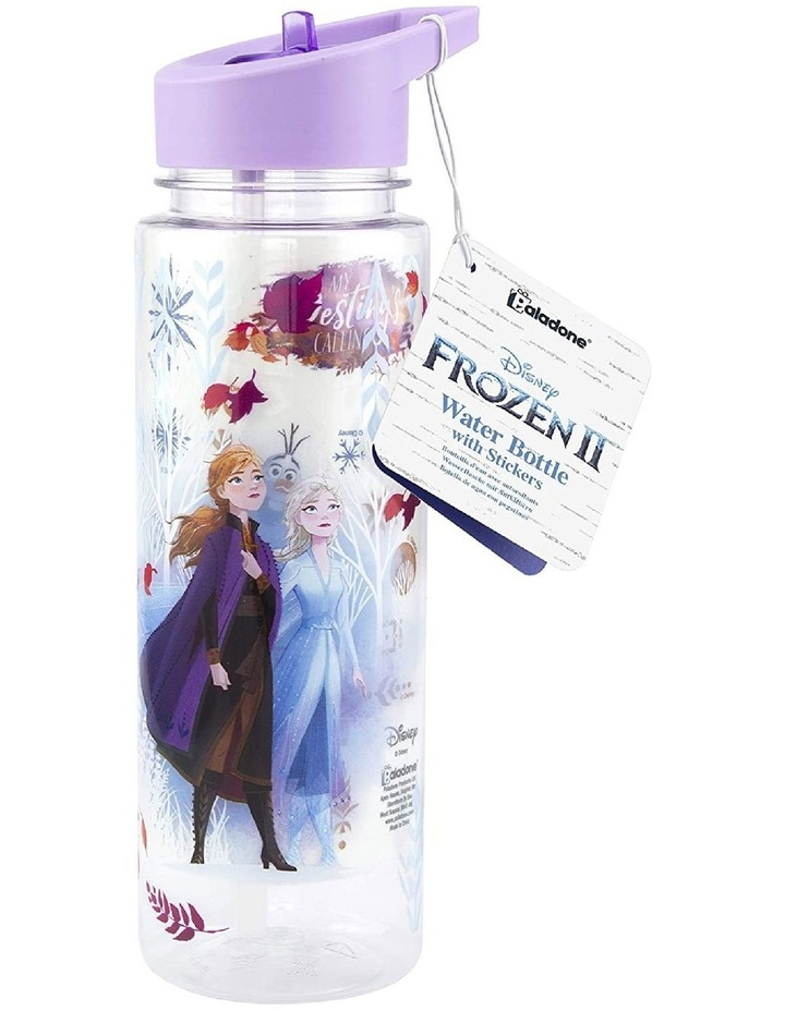 Frozen Water Bottle With Accessory Decals image 1