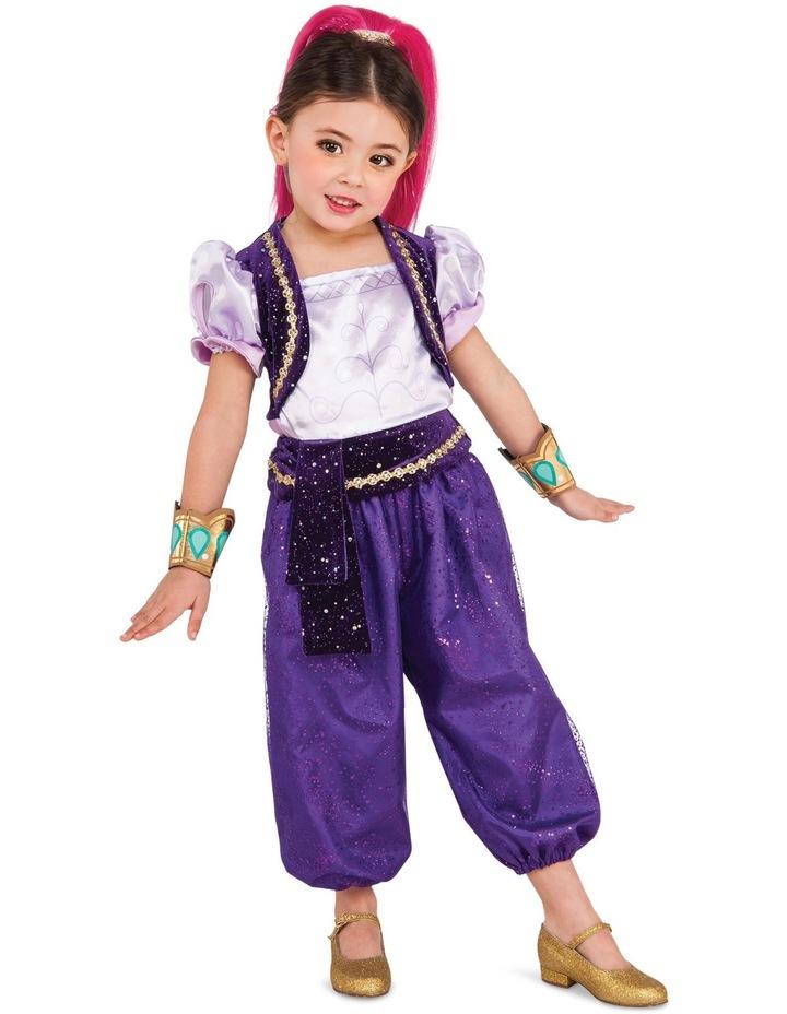 Shimmer Costume size 3-5 image 1