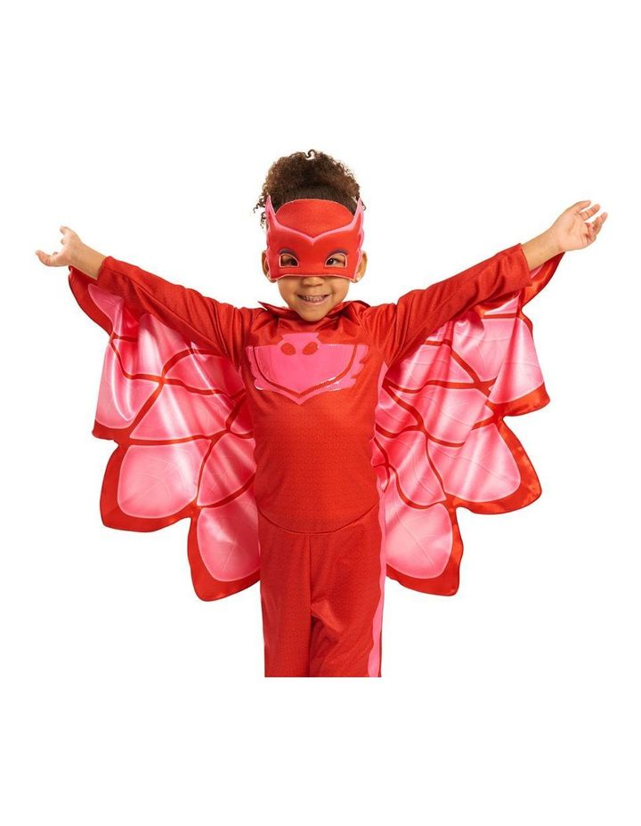 Costume Set Assorted image 1