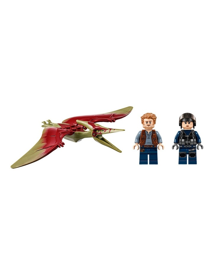 Pteranodon Chase 75926 image 3