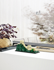 LEGO - Architecture Great Wall of China 21041