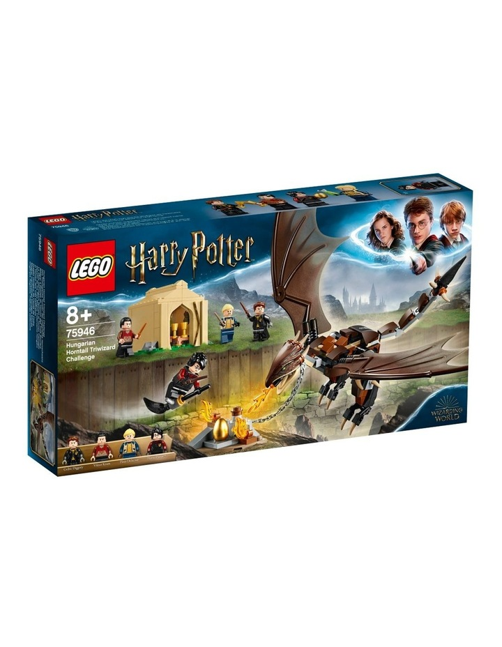 Harry Potter and the Goblet of Fire Hungarian Horntail Triwizard Challenge 75946 image 1