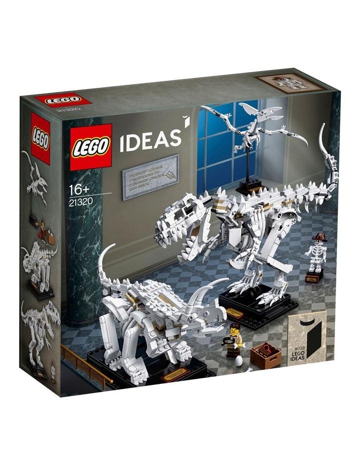 Ideas Dinosaur Fossils 21320 image 1