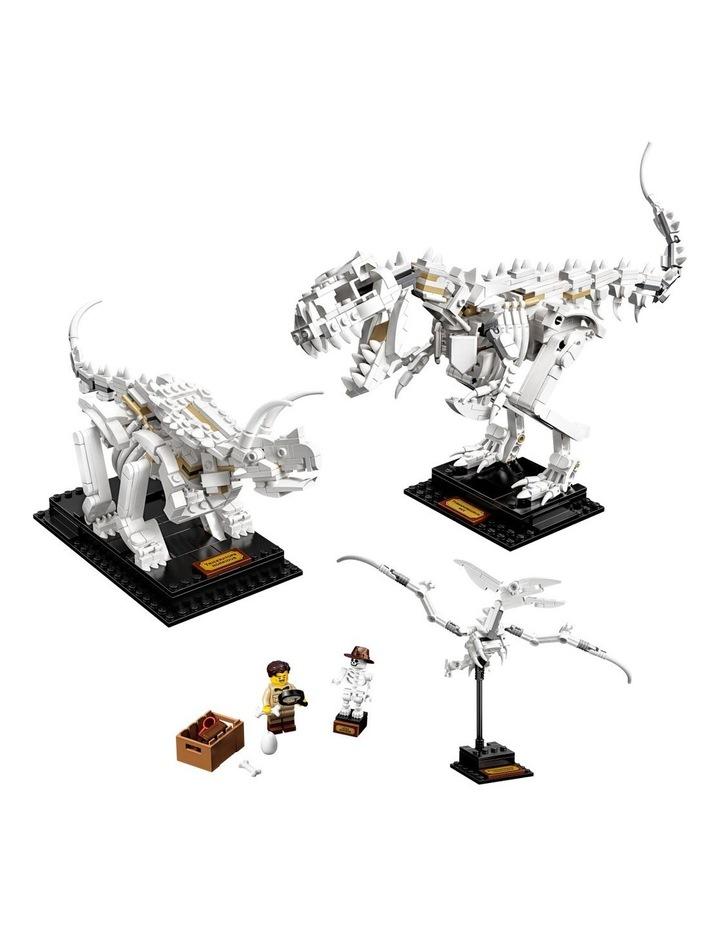 Ideas Dinosaur Fossils 21320 image 2