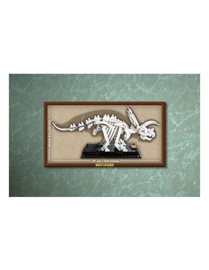 Ideas Dinosaur Fossils 21320 image 6
