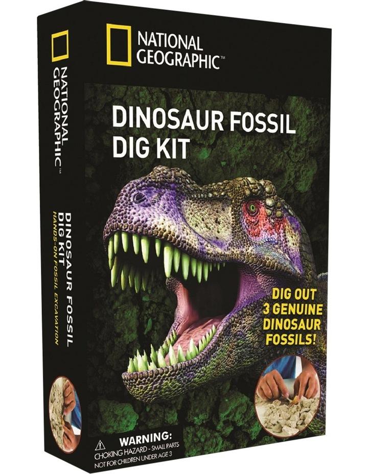 Dinosaur Dig Kit image 2