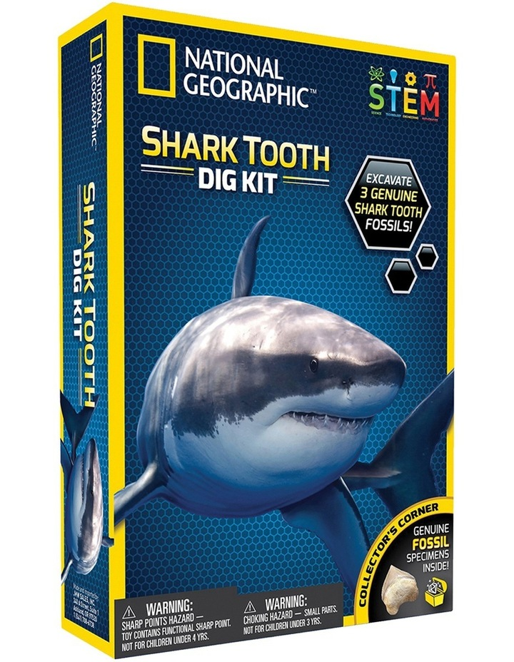 Shark Tooth Dig Kit image 1