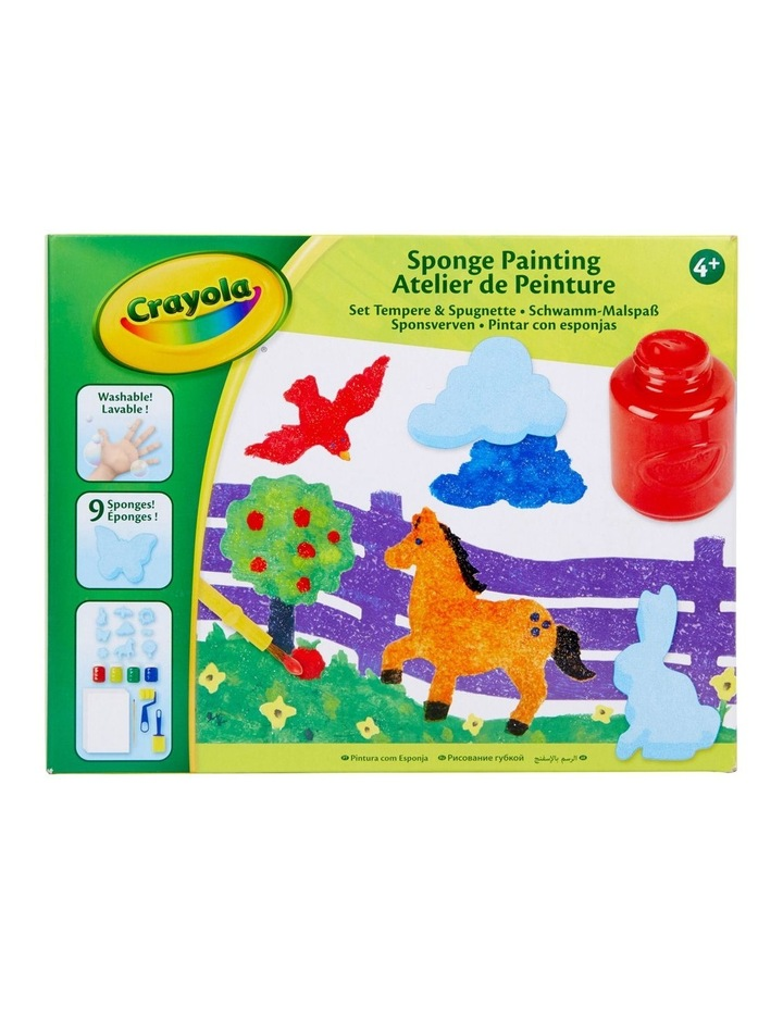 Sponge Painting Kit image 1