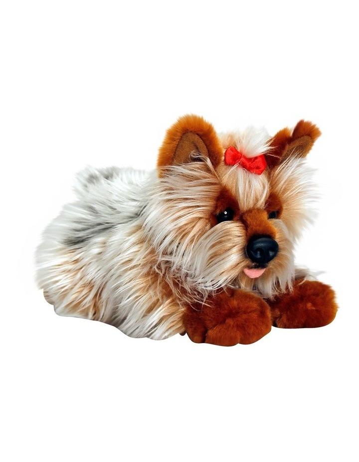 Lil Pups Yorkie image 1