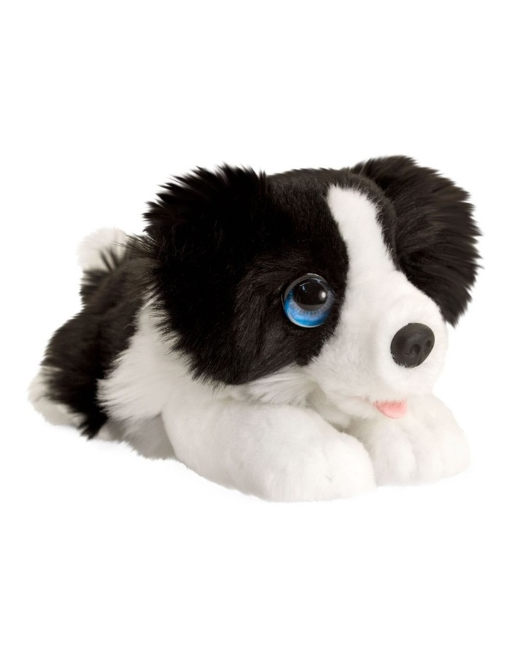 Cuddle Pup Border Collie Large image 1