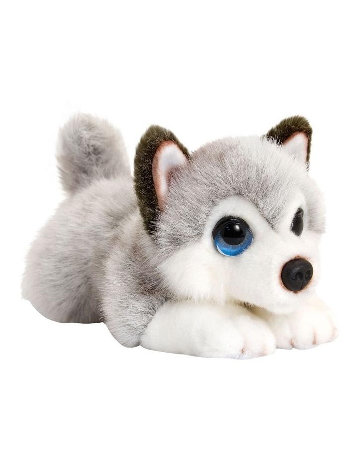 Cuddle Pup Husky 37cm image 1