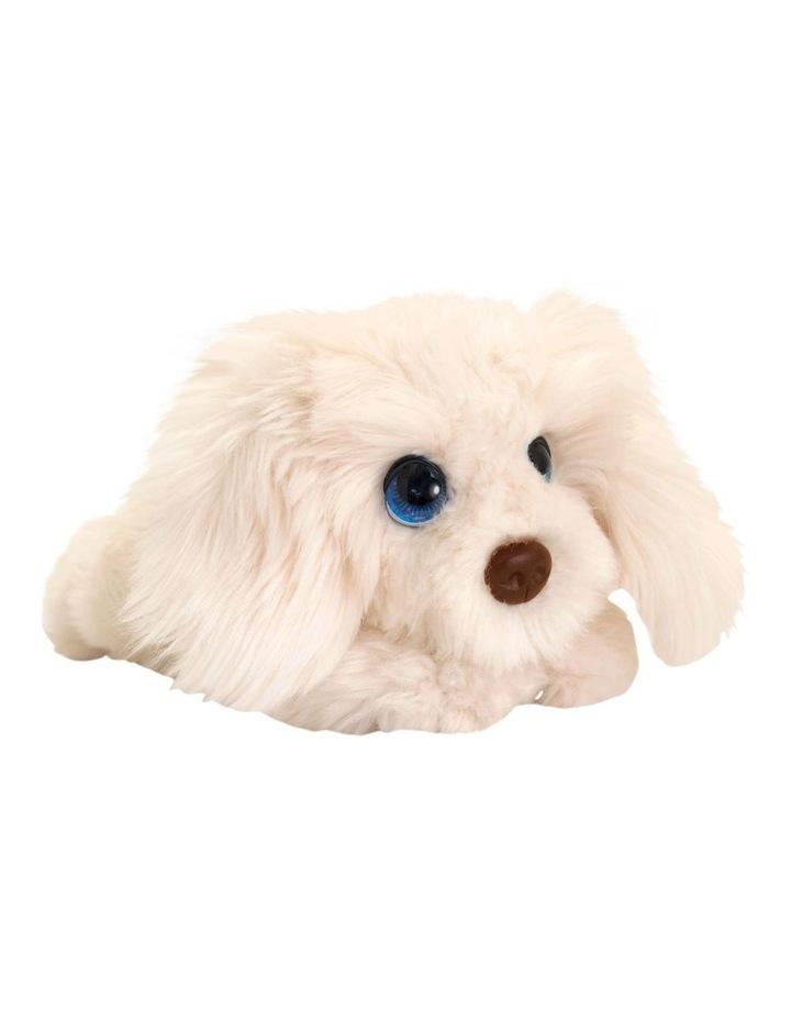 Cuddle Pup Labradoodle Large image 1