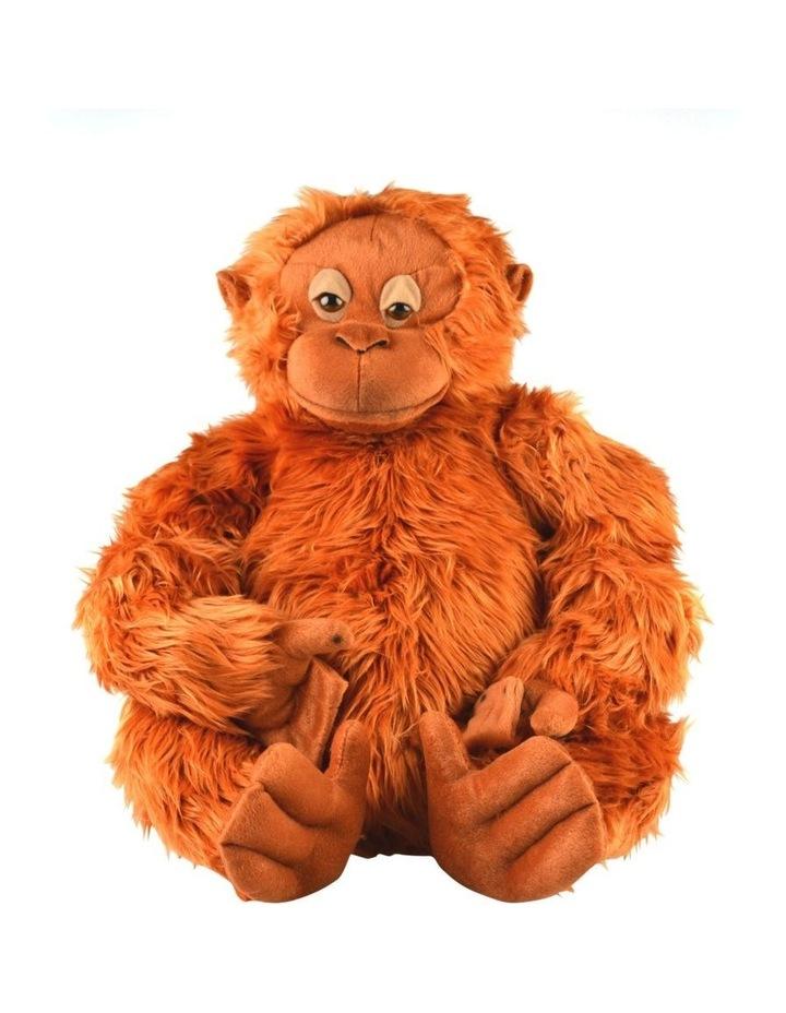 Orangutan Owen medium image 1