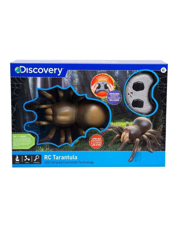 RC Tarantula image 1