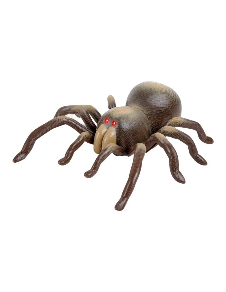 RC Tarantula image 3