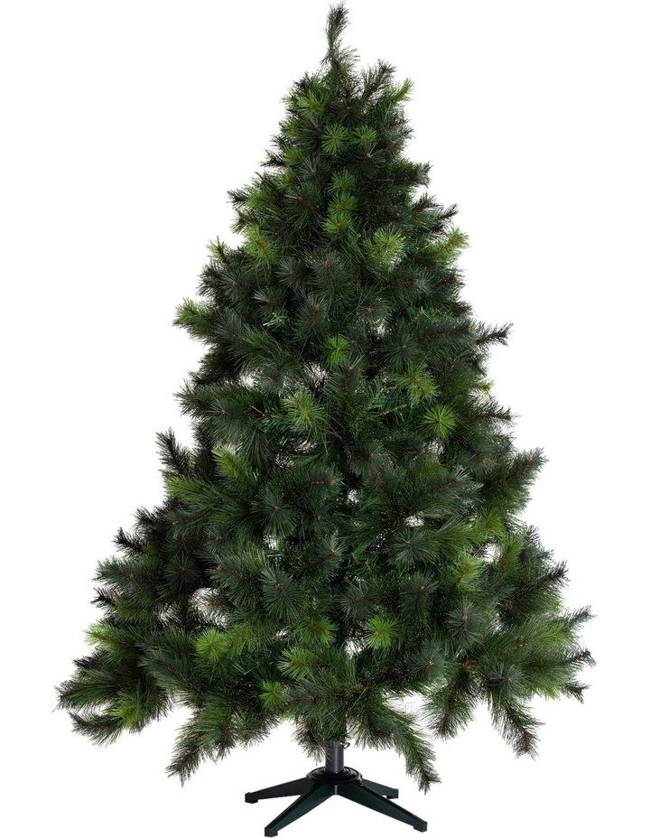 Deluxe Reno Pine Tree, 210cm image 2
