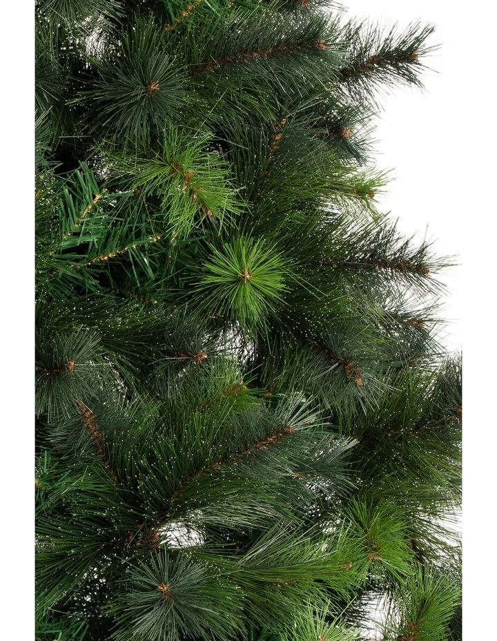 Deluxe Reno Pine Tree, 210cm image 4