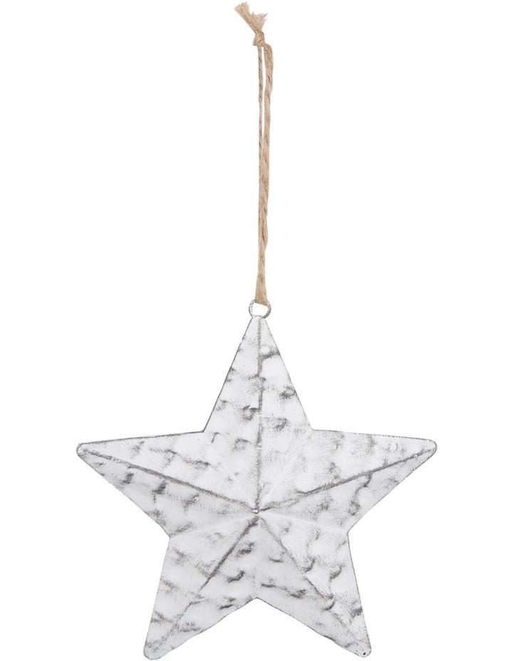 Eucalyptus Metal White Antique Finish Star image 1