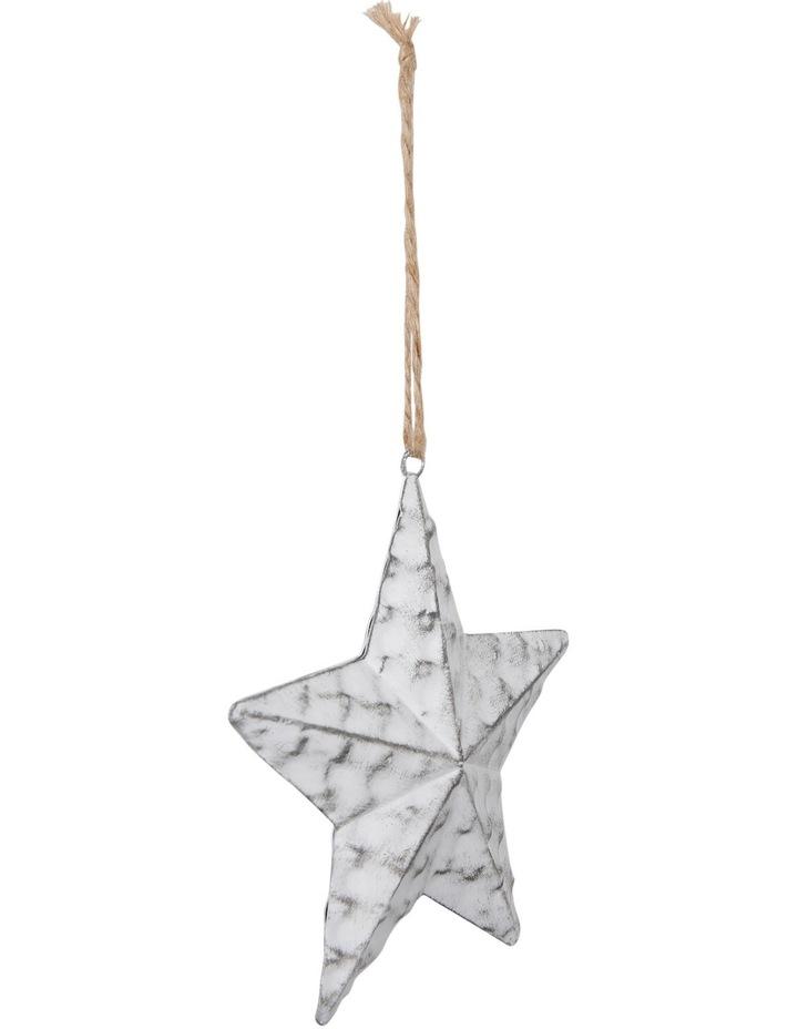 Eucalyptus Metal White Antique Finish Star image 2
