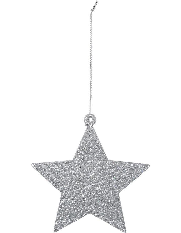 Eucalyptus Silver Glitter Star image 1