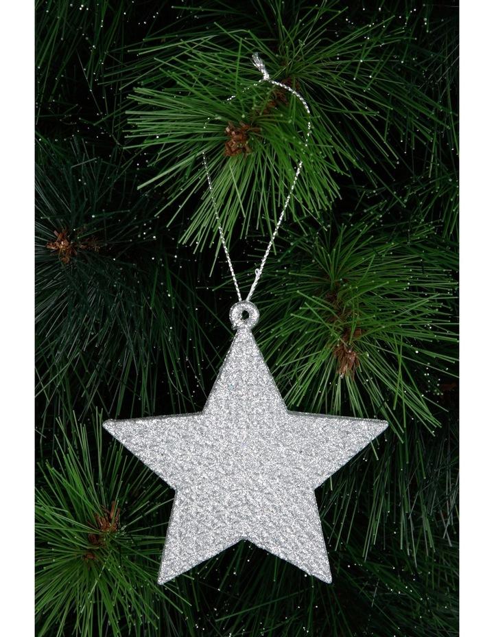 Eucalyptus Silver Glitter Star image 3
