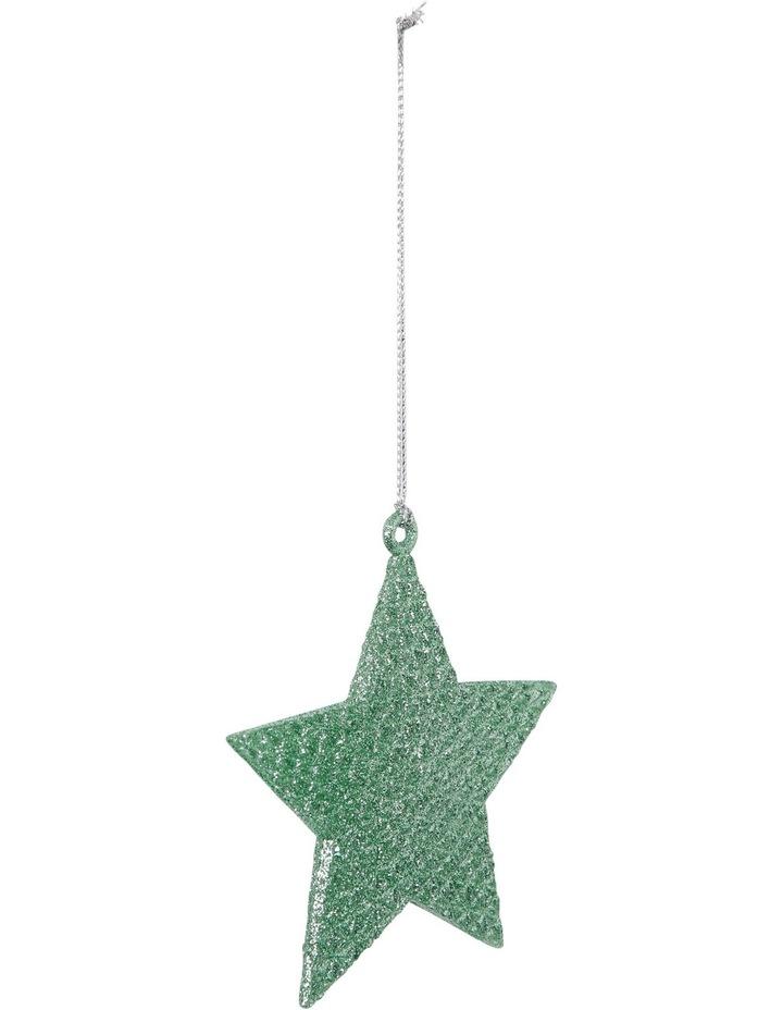 Eucalyptus Cameo Green Glitter Star image 2