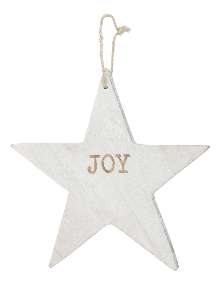 Eucalyptus 15cm White Washed Wooden Star with Joy Wording image 1