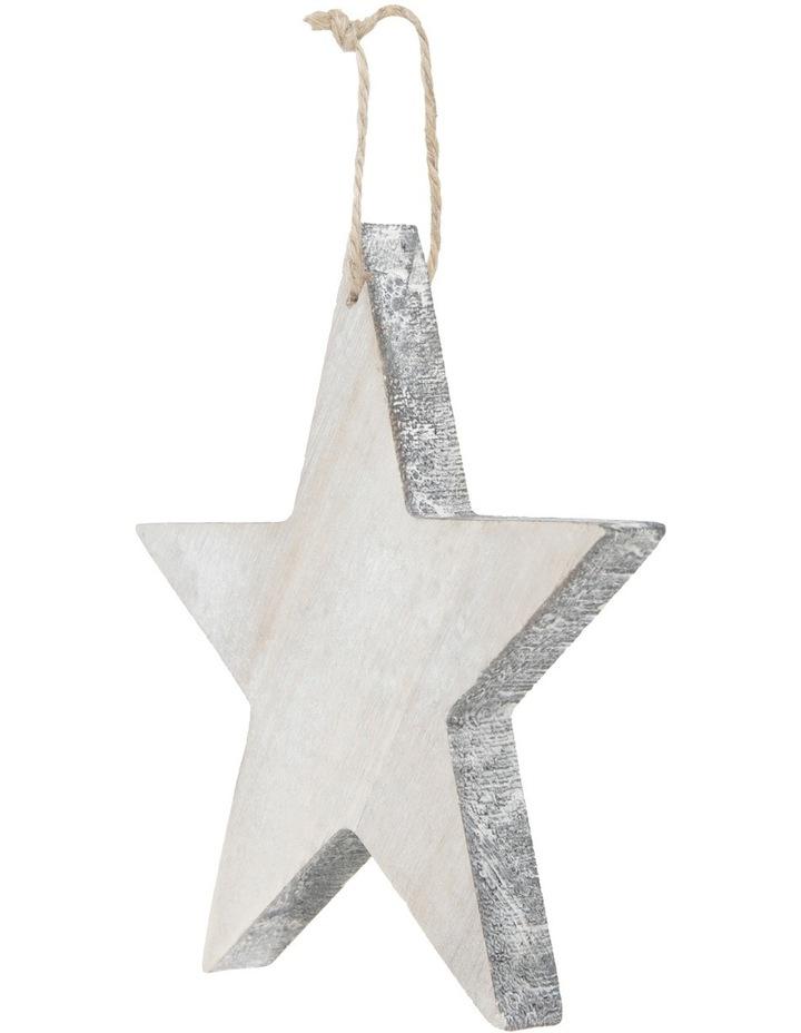 Eucalyptus 15cm White Washed Wooden Star with Joy Wording image 2