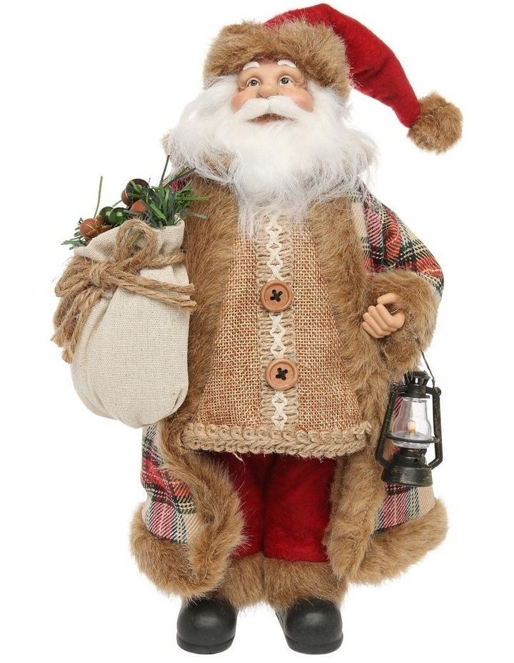 Eucalyptus Santa With Fabric Coat image 1