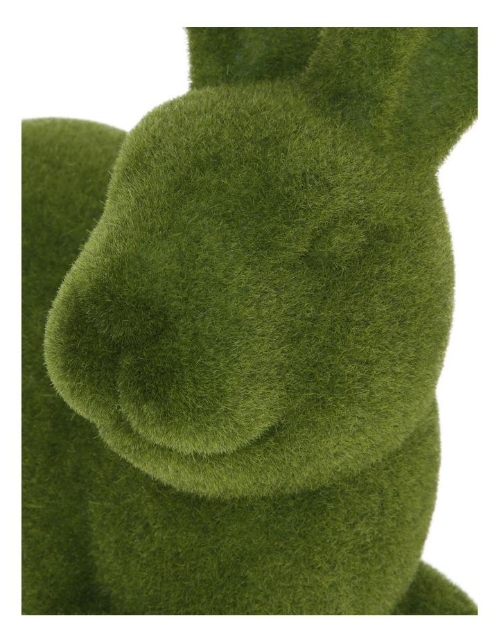 Green Moss Bunny Sitting image 3