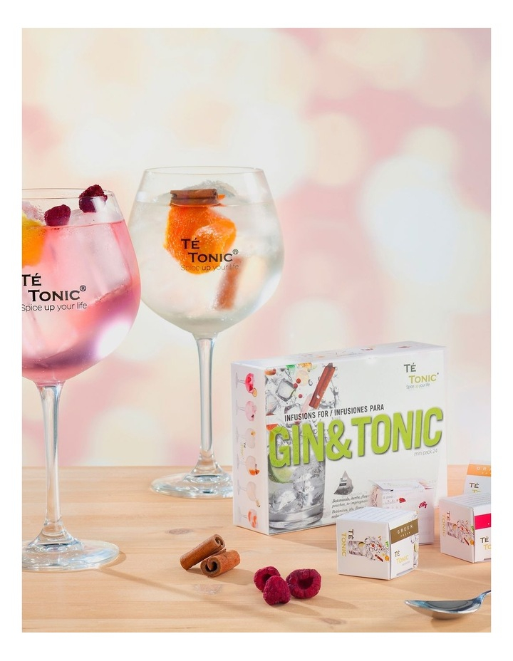 Mini Pack - 24 Gin and Tonic image 3