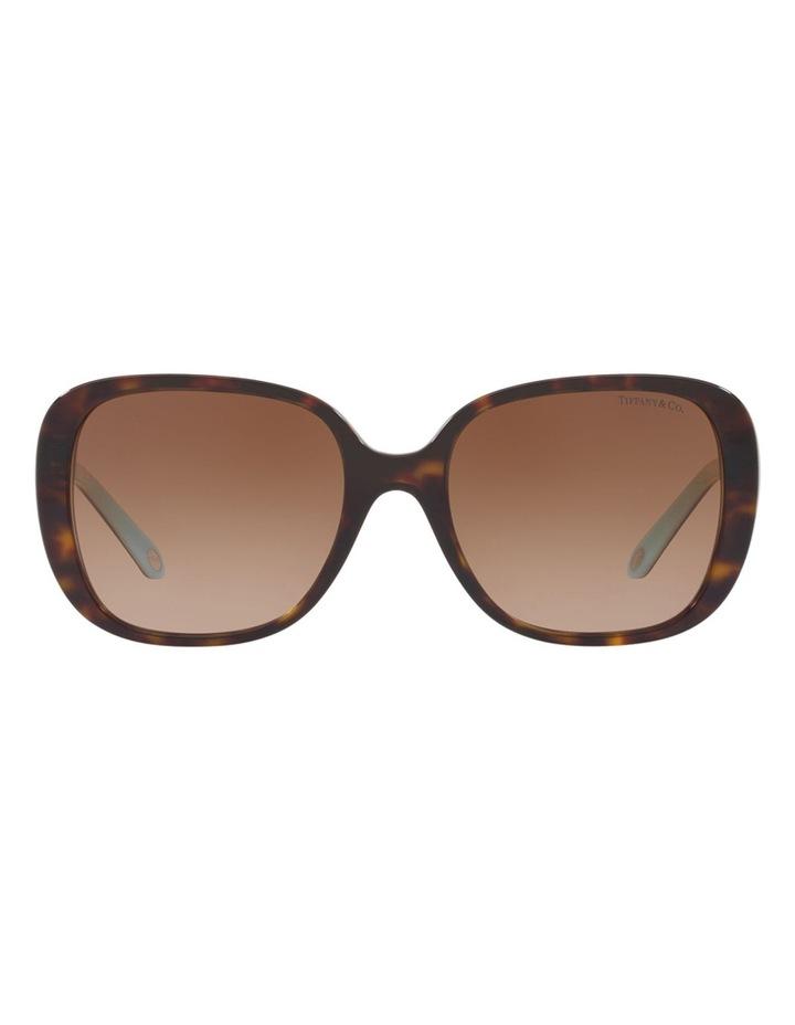 TF4137B 406503 Sunglasses image 1