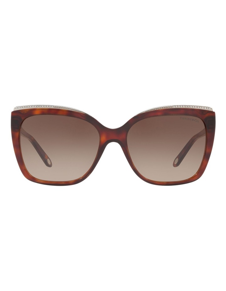 TF4135B 406501 Sunglasses image 1