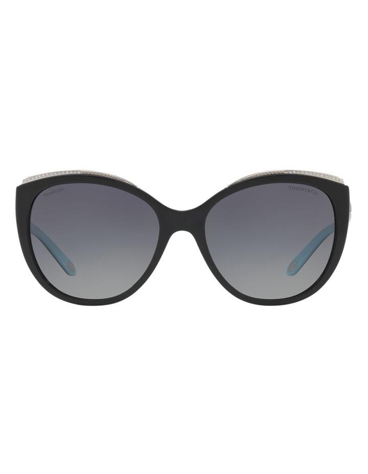 TF4134B 406500 Polarised Sunglasses image 1
