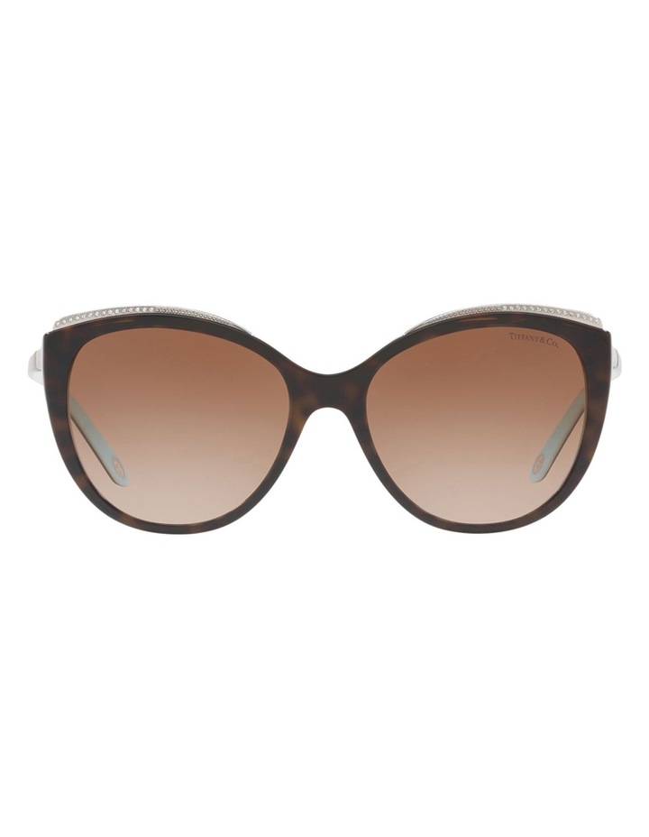 TF4134B 406499 Sunglasses image 1