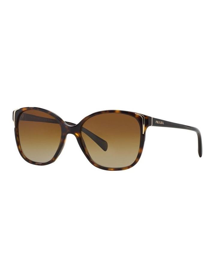 Polarised Havana Square Sunglasses PR 01OS 350638 image 1