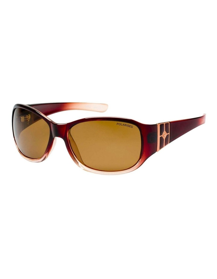 TCC1004622 322950 Polarised Sunglasses image 4
