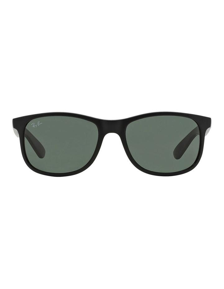 RB4202 359851 Sunglasses image 2