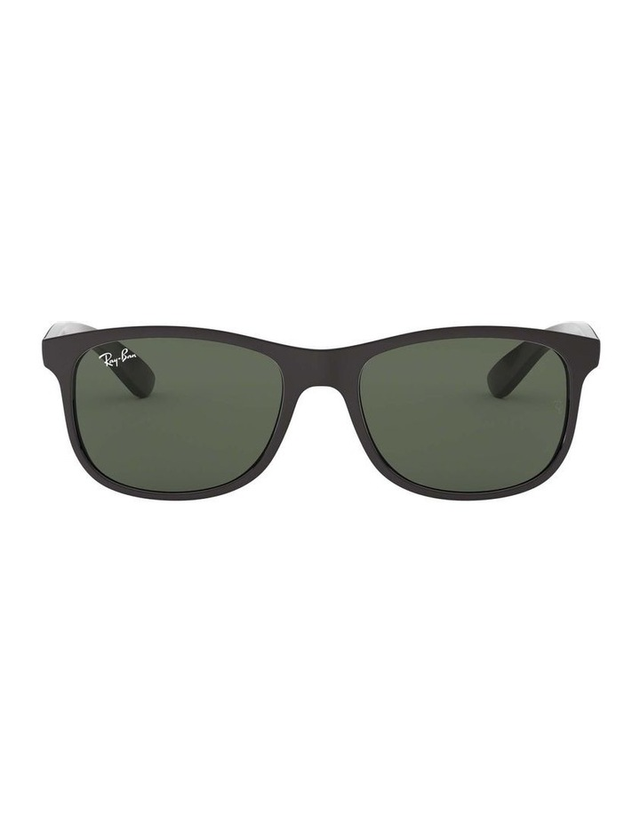 0RB4202 Andy 1138725001 Sunglasses image 2