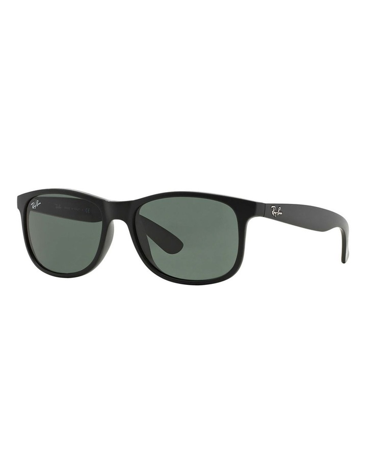 RB4202 359851 Sunglasses image 4