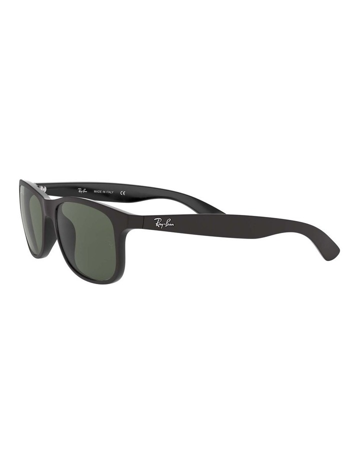 0RB4202 Andy 1138725001 Sunglasses image 3