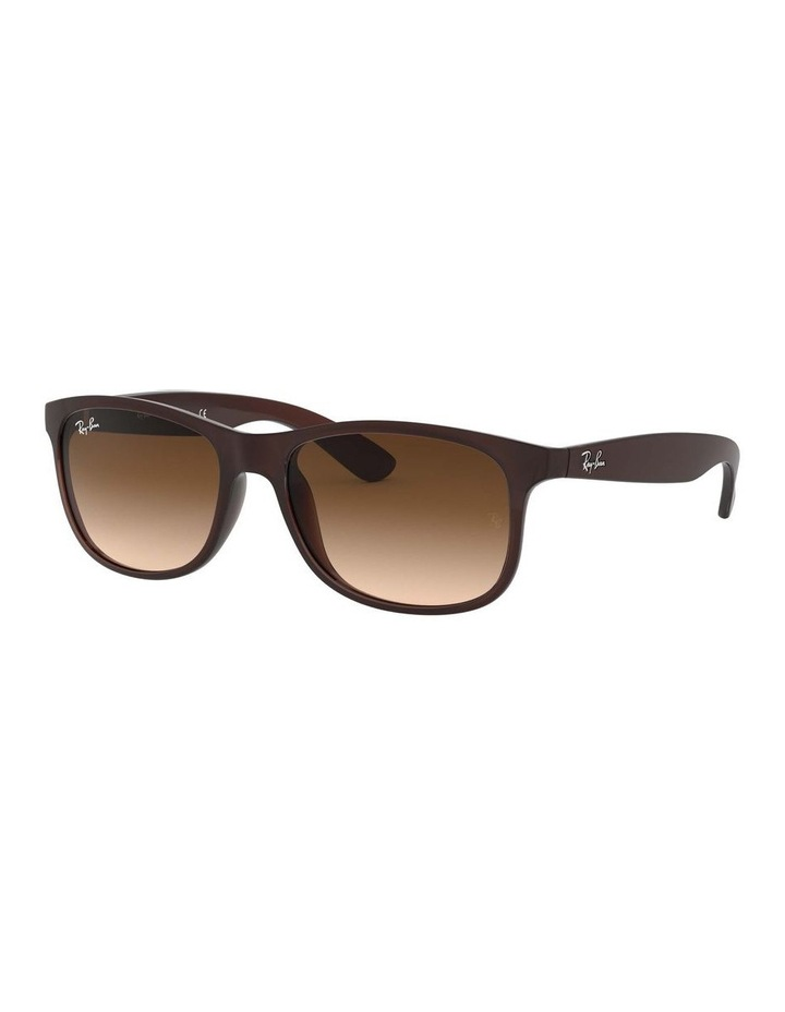 0RB4202 Andy 1138725002 Sunglasses image 1