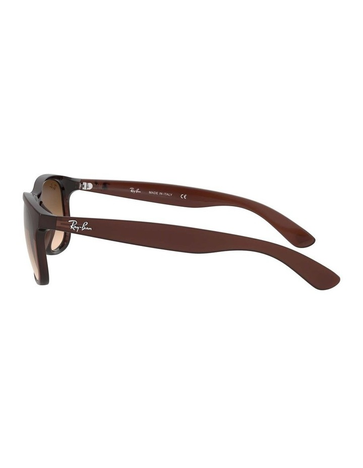 0RB4202 Andy 1138725002 Sunglasses image 4