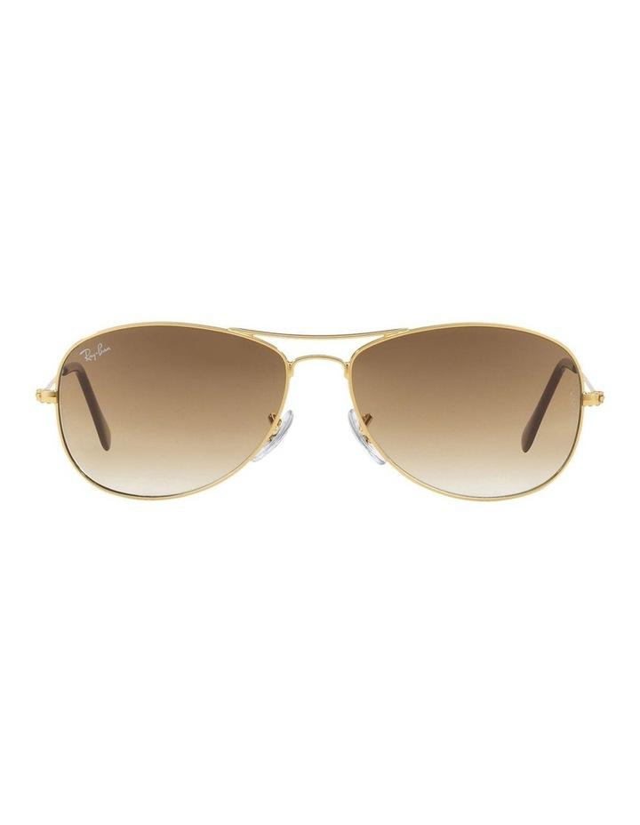 RB3362 318270 Sunglasses image 2
