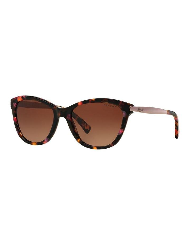 RA5201 386322 Polarised Sunglasses image 4
