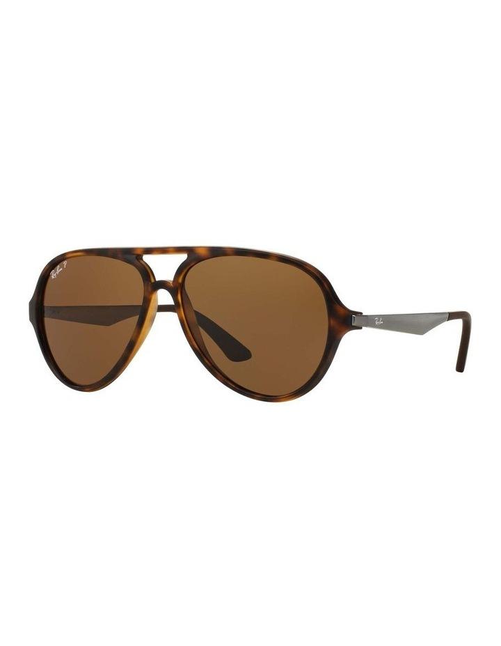 0RB4235 1508695006 Polarised Sunglasses image 1