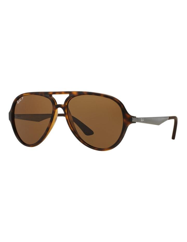 0RB4235 387090 Brown Polarised Sunglasses image 3